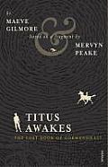 Titus Awakes The Lost Book of Gormenghast