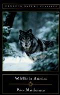 Wildlife In America