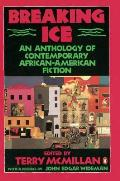 Breaking Ice An Anthology of Contemporary African American Fiction