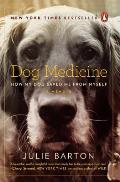 Dog Medicine How My Dog Saved Me from Myself