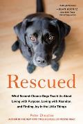 Rescued What Second Chance Dogs Teach Us about Living with Purpose Loving with Abandon & Finding Joy in the Little Things