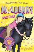 Meadow Vale Ponies: Mulberry for Sale