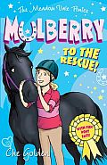 The Meadow Vale Ponies: Mulberry to the Rescue!