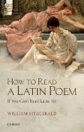 How to Read a Latin Poem If You Cant Read Latin Yet