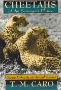 Cheetahs of the Serengeti Plains Group Living in an Asocial Species