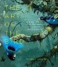 Art of the Bird The History of Ornithological Art through Forty Artists