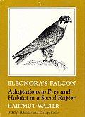 Eleonoras Falcon Adaptations to Prey & Habitat in a Social Raptor
