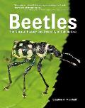 Beetles The Natural History & Diversity of Coleoptera