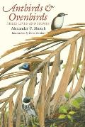 Antbirds and Ovenbirds: Their Lives and Homes