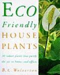Eco Friendly House Plants