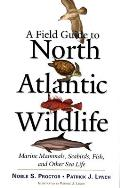 Field Guide to North Atlantic Wildlife Marine Mammals Seabirds Fish & Other Sea Life