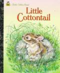 Little Cottontail