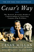 Cesar's Way: The Natural Everyday Guide to Understanding and Correcting Common Dog Problems
