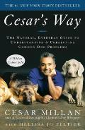 Cesars Way the Natural Everyday Guide to Understanding & Correcting Common Dog Problems