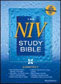 Bible Niv Study Red Letter Burgundy