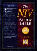 Bible Niv Study Bible burgundy