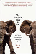 Why Elephants Have Big Ears & Other Ridd