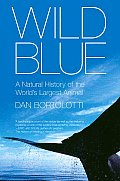 Wild Blue A Natural History of the Worlds Largest Animal