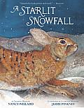 Starlit Snowfall