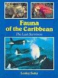 Fauna Of The Caribbean The Last Survivor