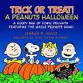 Trick Or Treat A Peanuts Halloween
