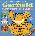 Garfield Fat Cat 3 Pack 16