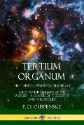 Tertium Organum, The Third Canon of Thought: A Key to the Enigmas of the World, A Classic of Theosophy and the Occult