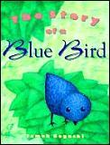 Story Of A Blue Bird