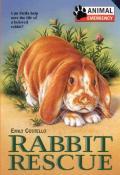 Animal Emergency 05 Rabbit Rescue