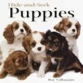 Hide & Seek Puppies