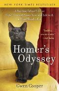 Homers Odyssey a Fearless Feline Tale