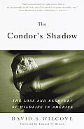 Condors Shadow The Loss & Recovery of Wildlife in America