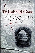 Dark Flight Down