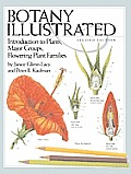 Botany Illustrated Introduction to Plants Major Groups Flowering Plant Families