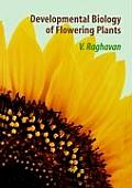Developmental Biology of Flowering Plants