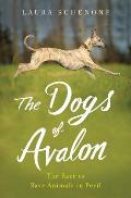 Dogs of Avalon The Race to Save Animals in Peril