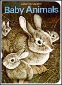 Baby Animals Board Books
