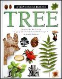 Tree Eyewitness