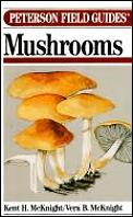 Mushrooms Peterson Guide