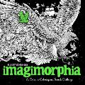 Imagimorphia An Extreme Coloring & Search Challenge