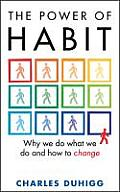 Power of Habit Why We Do What We Do & How to Change by Charles Duhigg