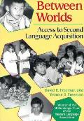 Between Worlds Access To Second Language