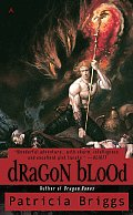 Dragon Blood Hurog Duology Book 2