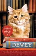 Dewey The Small Town Library Cat Who Touched the World