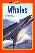Whales All Aboard Reading