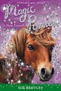 Magic Ponies 01 New Friend