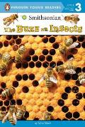 Buzz on Insects