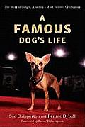 Famous Dogs Life The Story of Gidget Americas Most Beloved Chihuahua