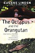 Octopus & The Orangutan