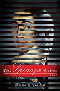 Spinoza Problem